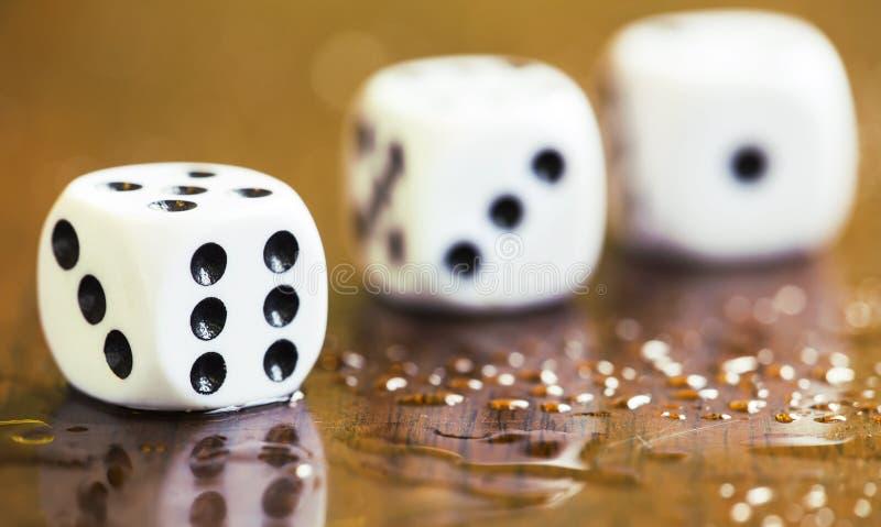 La dipendenza di gioco, il concetto di dipendenza, bianco taglia immagini stock