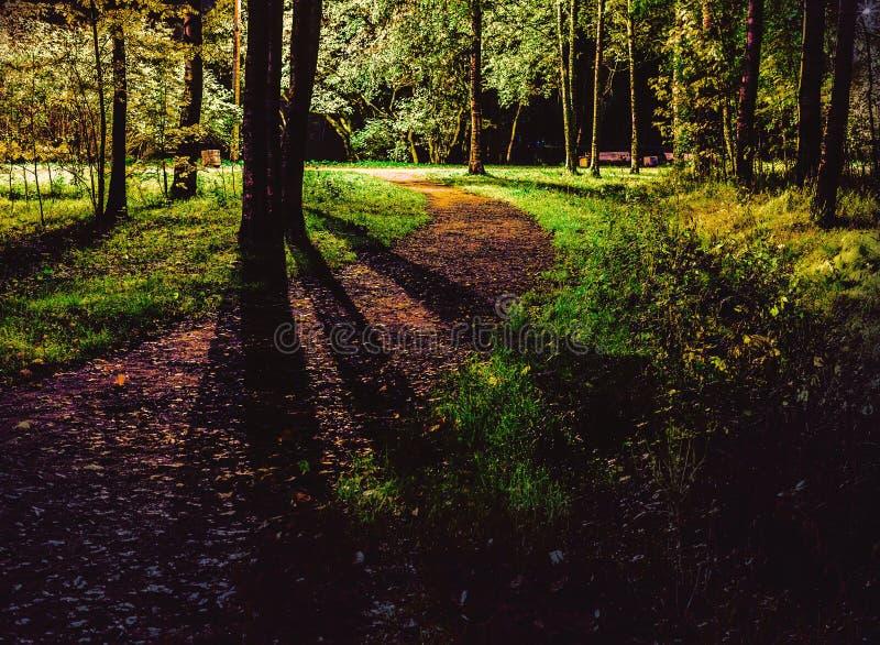 La direzione del percorso dall'oscurità alla strada leggera fotografia stock