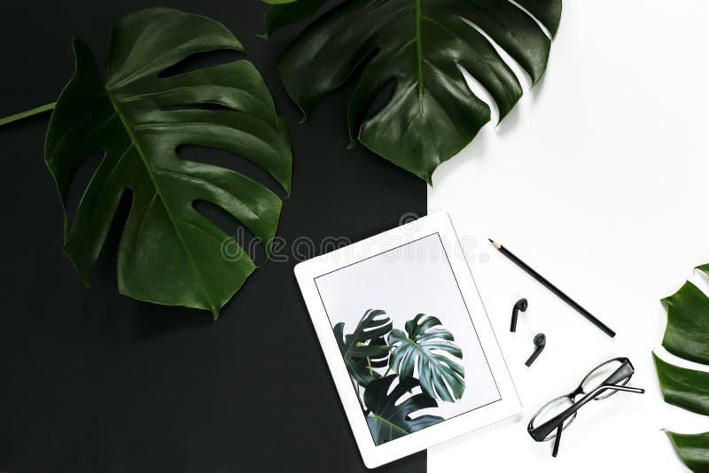 La disposition d'espace de travail de bureau avec des accessoires de comprimé sur le fond blanc, monstera tropical part photos stock