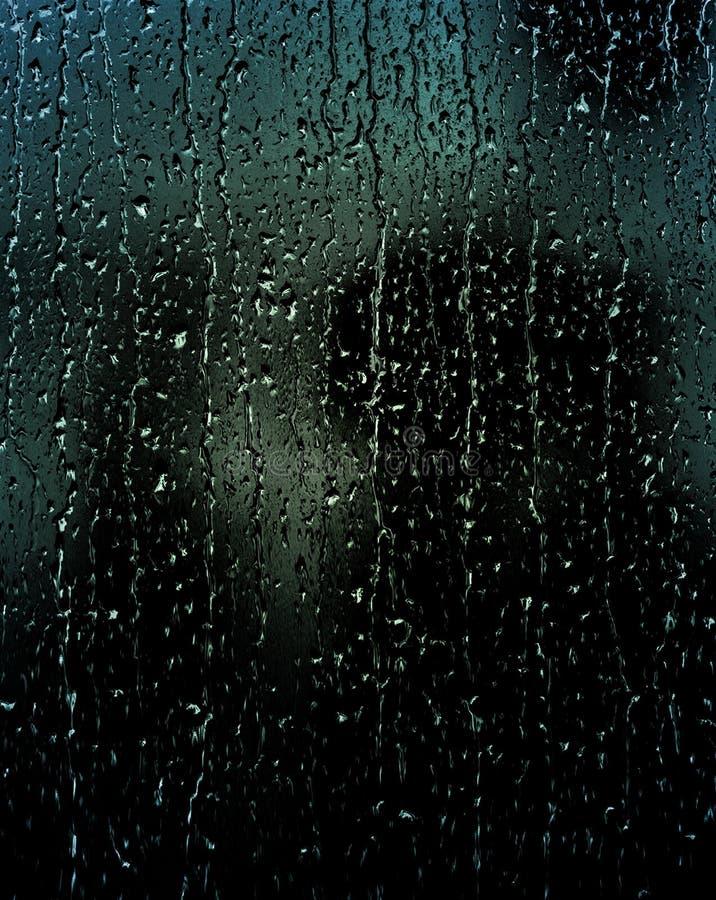 La doccia meravigliosa della pioggia persistente nel sole di primavera o l'estate gode della natura di rilassamento immagini stock