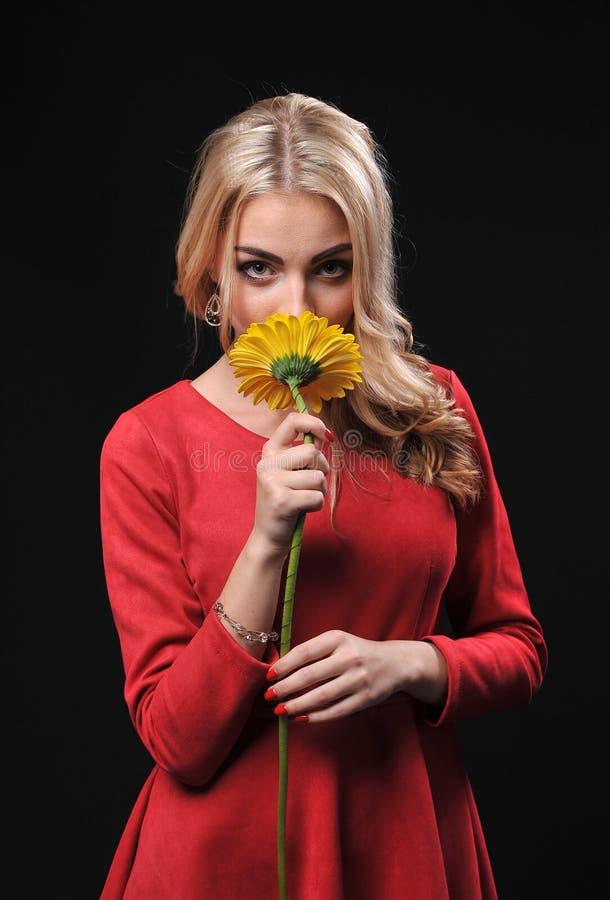 La donna bionda della ragazza su un fondo nero con un ramo del mazzo dei crisantemi gialli in mani fotografia stock