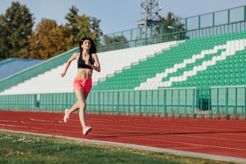 La donna castana di giovane forma fisica in breve e funzionamento superiore su una pista dello stadio Ragazza dell'atleta che fa  fotografia stock libera da diritti
