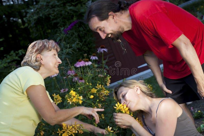 La donna che mostra una coppia fiorisce nel giardino immagini stock libere da diritti
