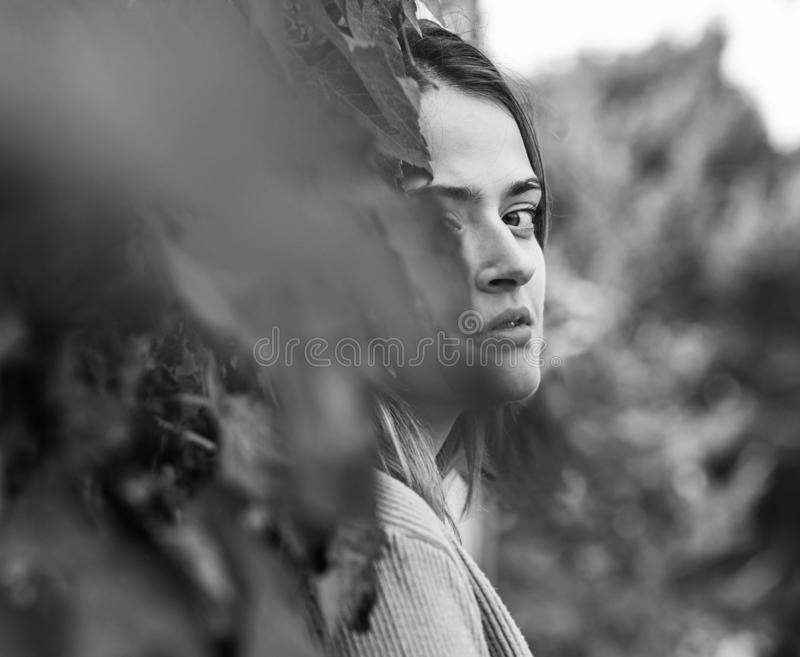 La donna con il fronte nascosto sull'edera di autunno lascia il fondo immagini stock libere da diritti
