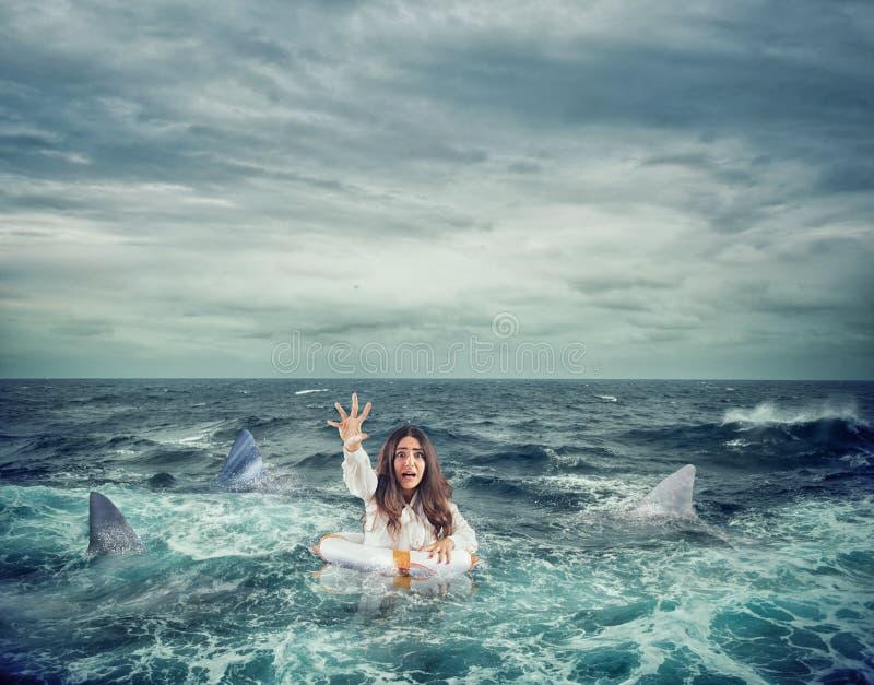 La donna di affari con il salvagente circondato dagli squali chiede l'aiuto fotografia stock