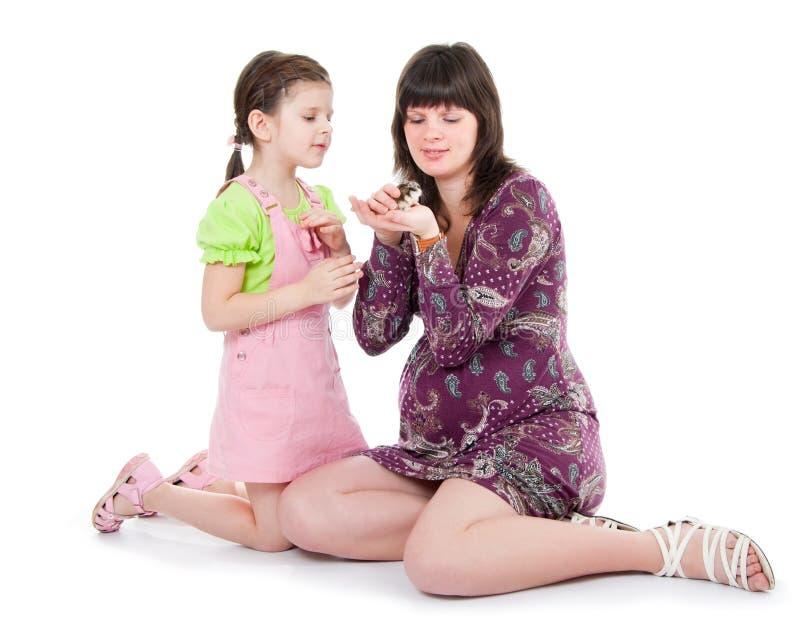 La donna e una figlia giocano con un criceto fotografie stock