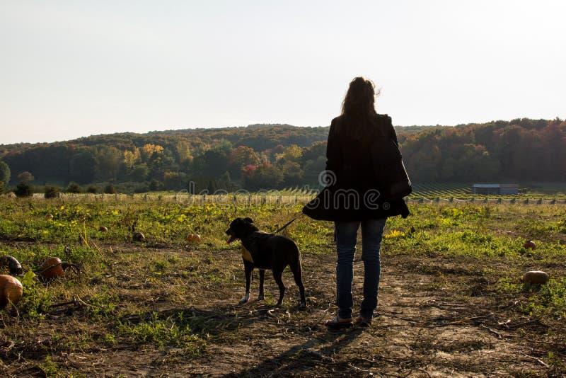 La donna ed il cane in zucca rattoppano paesaggio di raccolto della zucca di attività all'aperto di Halloween e di ringraziamento fotografia stock libera da diritti