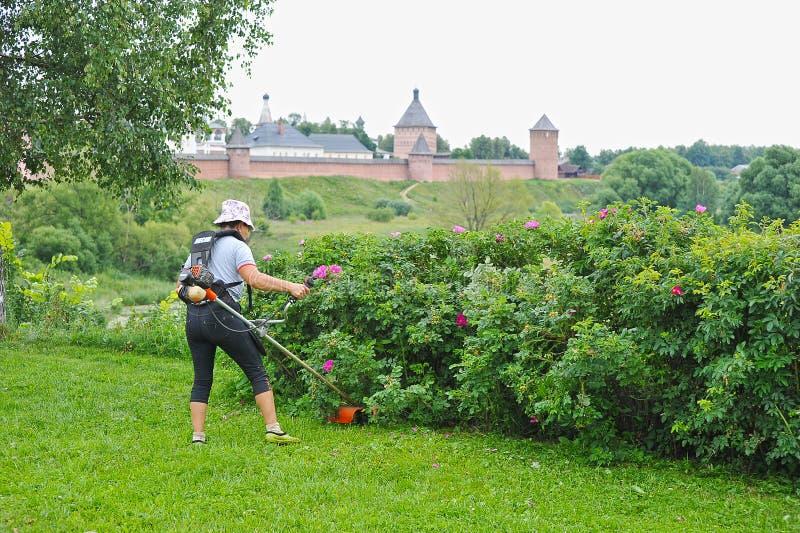 La donna falcia il regolatore dell'erba fotografia stock