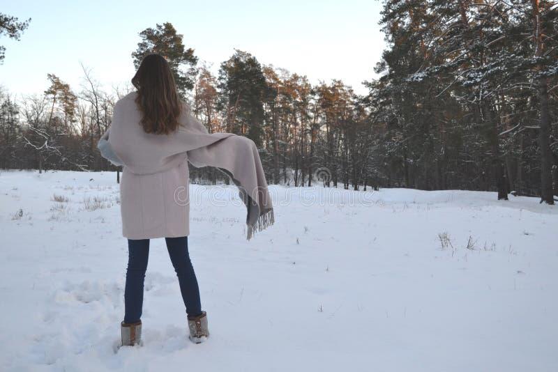 La donna gode della natura della foresta dell'inverno fotografia stock libera da diritti