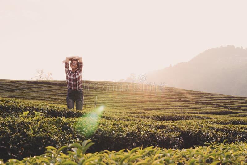 La donna graziosa sveglia e lavorando al giardino di tè di mattina fotografia stock libera da diritti