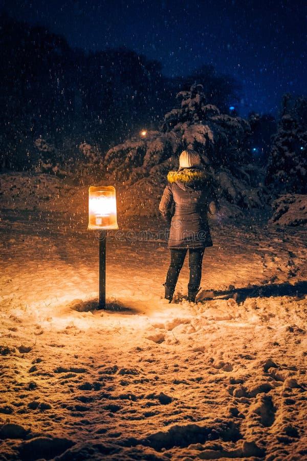 La donna nell'inverno copre con lei indietro sulla macchina fotografica vicino ad una La della via fotografia stock