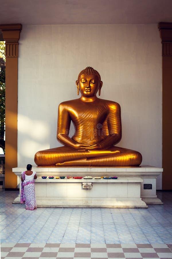 La donna porta i fiori a Buddha a Colombo fotografia stock libera da diritti