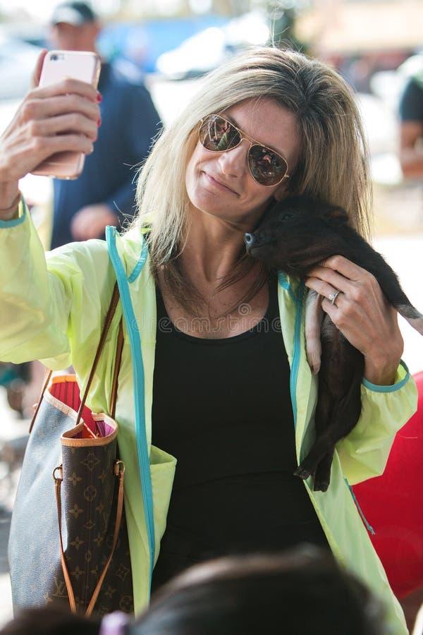 La donna prende Seflie con il porcellino sveglio al festival di caduta fotografia stock
