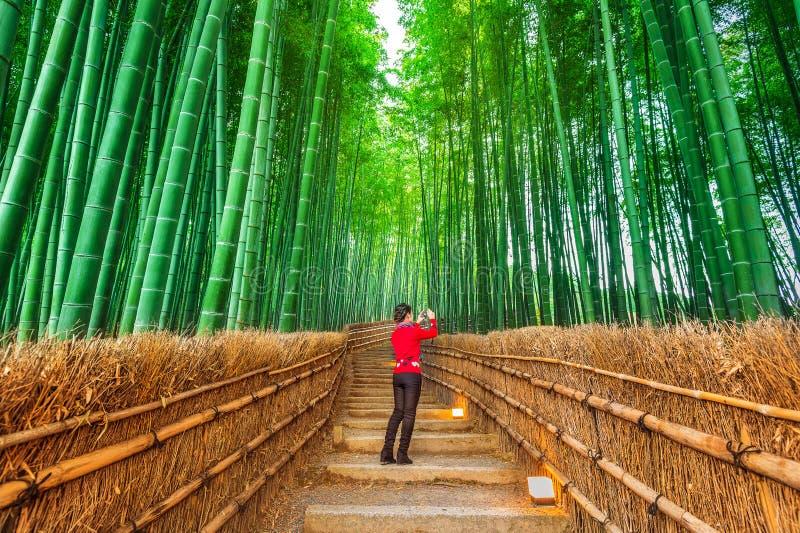 La donna prende una foto alla foresta di bambù a Kyoto, Giappone immagini stock