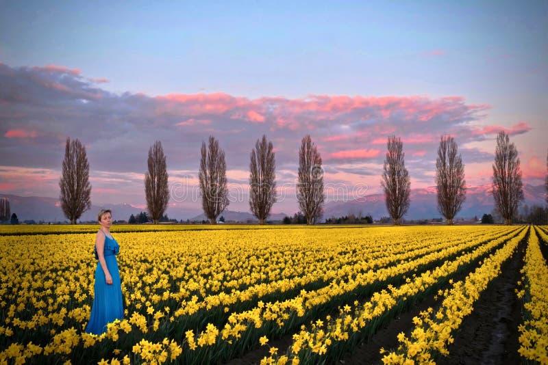 La donna in primavera sistema i prati con i fiori gialli fotografie stock