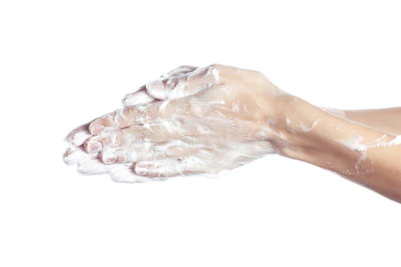 La donna si lava le sue mani mani femminili rappresentate in saponata fotografia stock libera da diritti