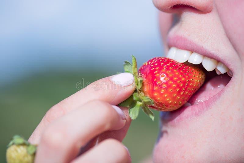La donna sta assaggiando una fragola organica matura rossa, ora legale fotografia stock libera da diritti