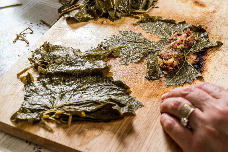 La donna sta avvolgendo le foglie dell'uva per il dolma turco con carne tritata immagine stock