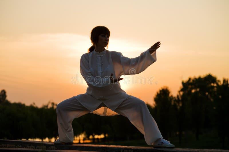 La donna in vestito bianco ha reso il taiji chuan - 4 fotografie stock