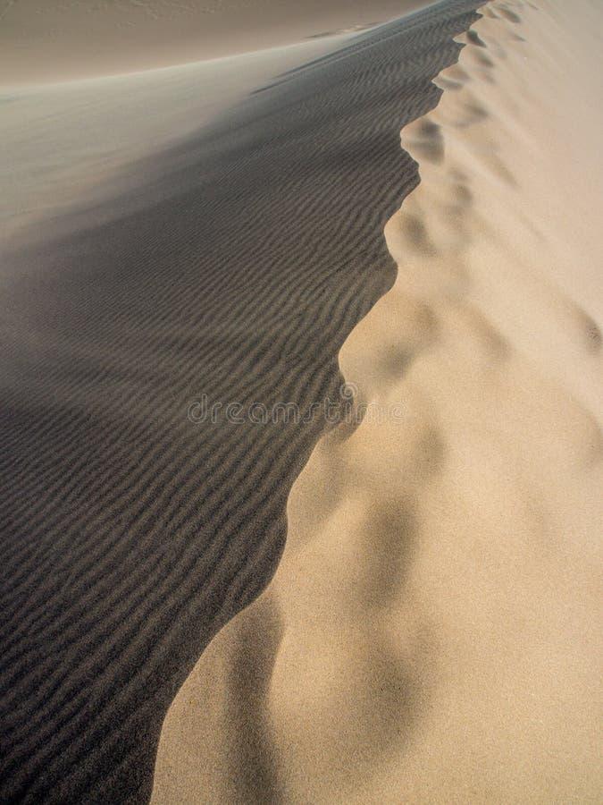 La dune de sable Ridge, se ferment, plein cadre, texture images libres de droits