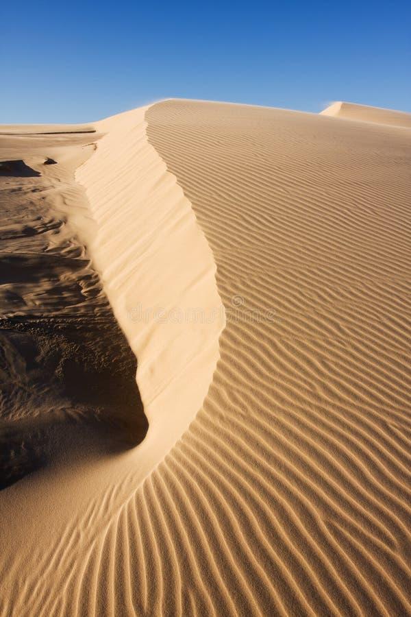 la dune ondule le sable image stock