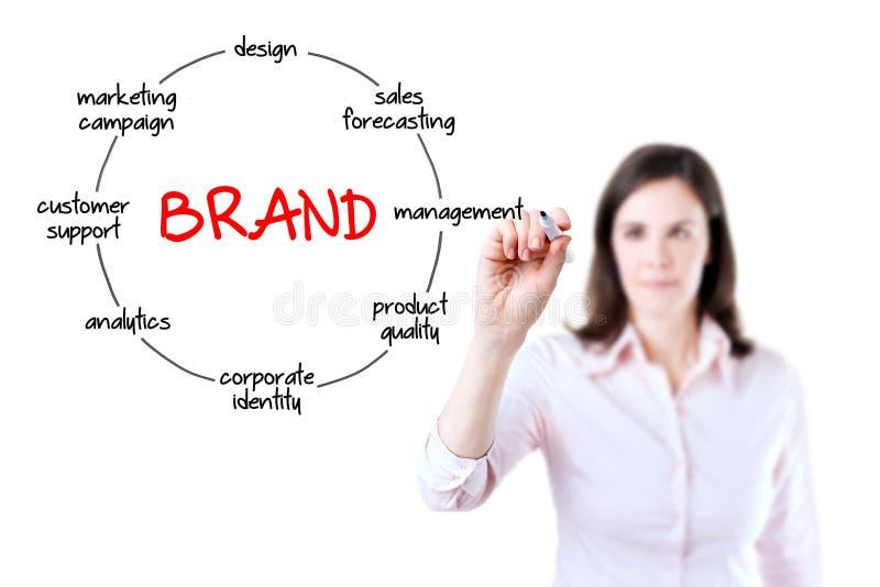 La empresaria con marca del dibujo del marcador circundó concepto del diagrama. Aislado en el fondo blanco imagen de archivo