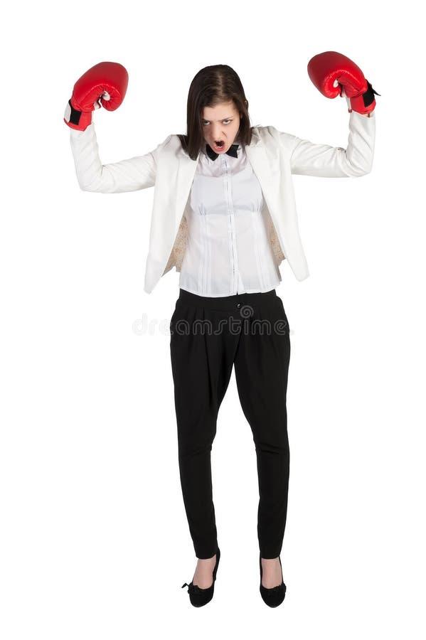 La empresaria enojada grita en guantes de boxeo foto de archivo