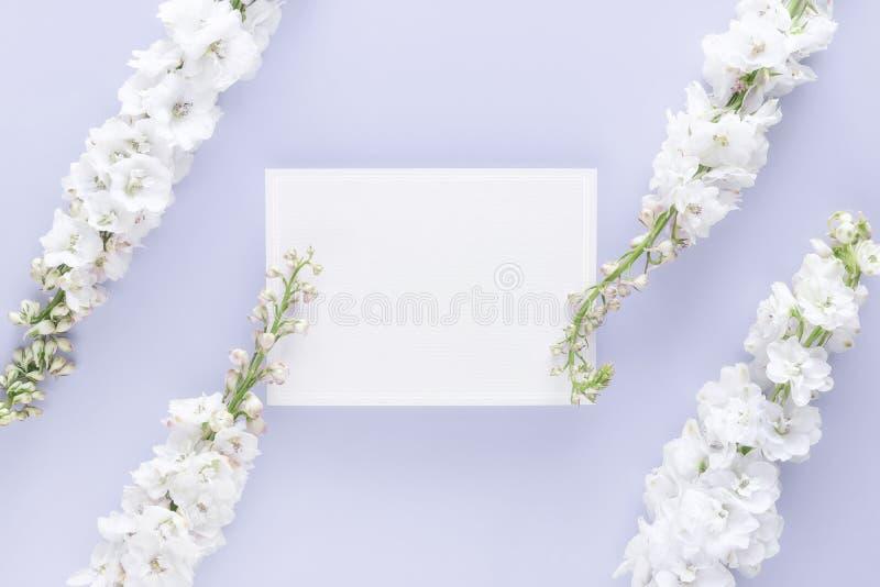 La endecha plana de la tarjeta de felicitación en blanco de lujo adorna con la flor blanca aislada en fondo del color en colores  imágenes de archivo libres de regalías