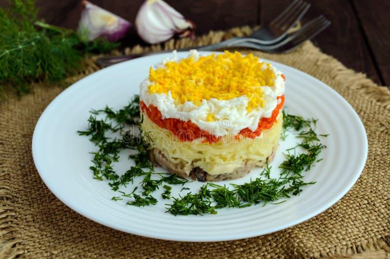 La ensalada fácil de la dieta acoda en la forma de un círculo y de un x28; atún en el aceite, patatas hervidas, zanahorias, eggs& foto de archivo