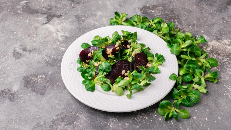 La ensalada vegetariana de las verduras crudas frescas de la remolacha y de los lanzamientos jovenes de la raíz de la lechuga sal imagen de archivo