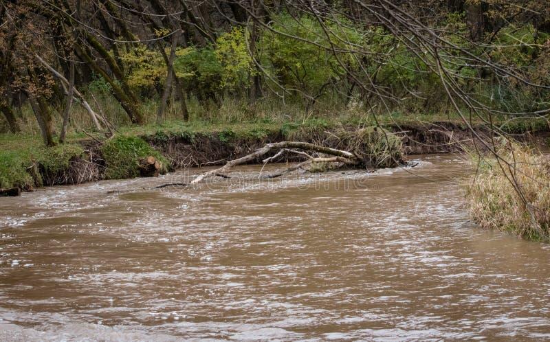 La erosión después de la inundación fotos de archivo libres de regalías