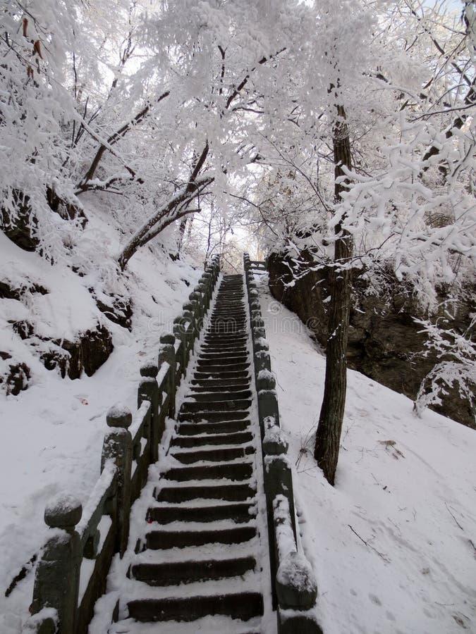 La escalera antigua después de la nieve fotografía de archivo libre de regalías