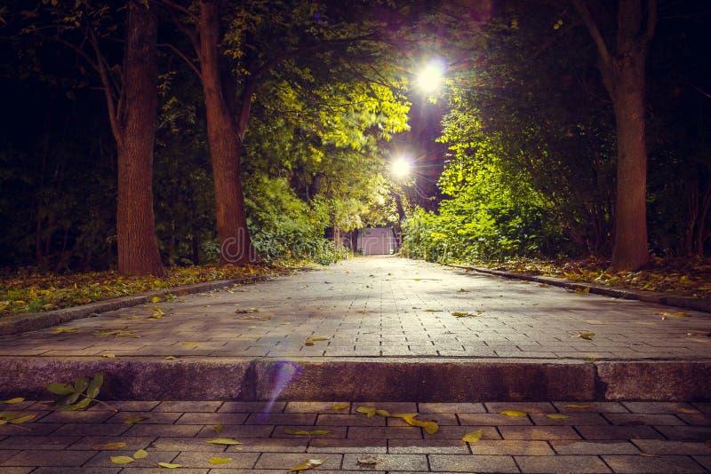 La escalera en el parque en la perspectiva lleva al top linternas foto de archivo libre de regalías