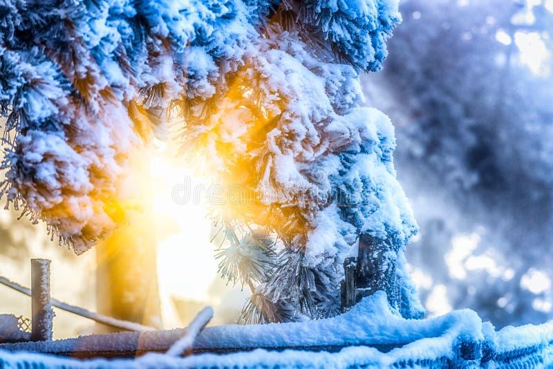 La escena de la esmalte-nieve de la nieve en el soporte Lu imagen de archivo libre de regalías