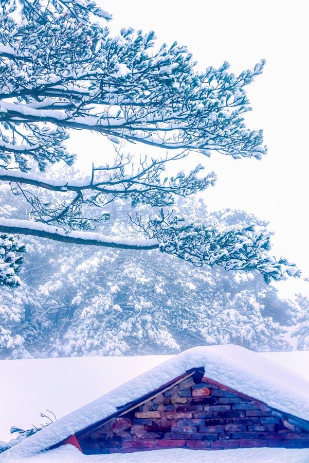 La escena de la esmalte-nieve de la nieve en el soporte Lu foto de archivo