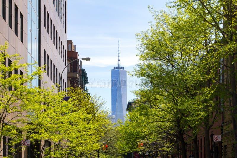 La escena de New York City en árbol alineó a Thompson Street en Greenwich V foto de archivo