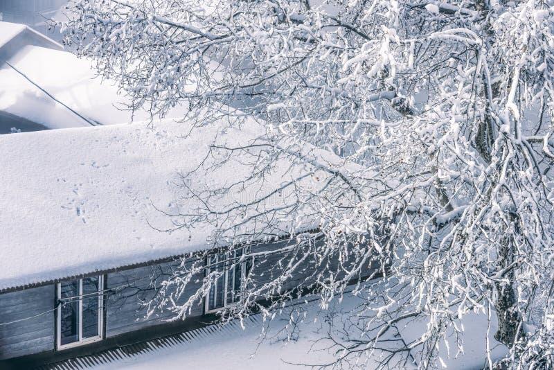 La escena del esmalte 3-Snow de la nieve en el soporte Lu imágenes de archivo libres de regalías