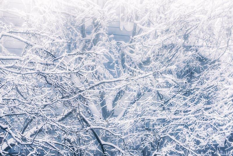 La escena del esmalte 5-Snow de la nieve en el soporte Lu fotografía de archivo