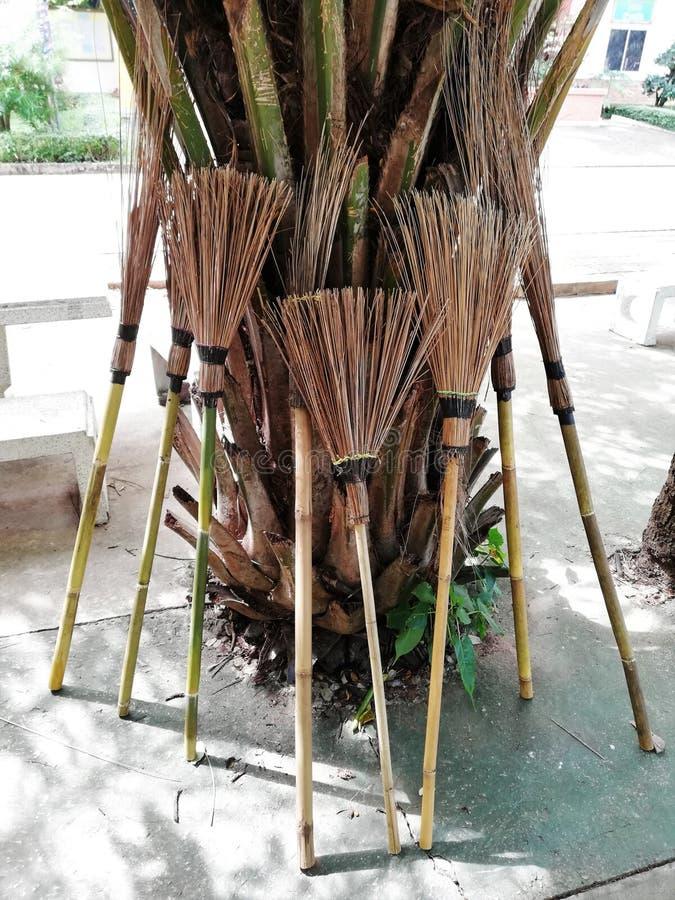 La escoba de bambú local de Tailandia pone en la palmera fotografía de archivo libre de regalías