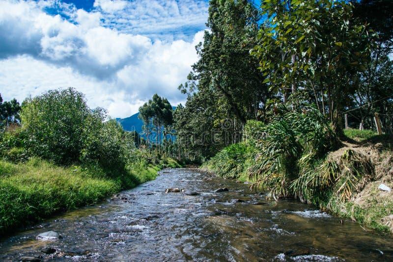 La Esperanza - Oxapampa di Quebrada immagine stock