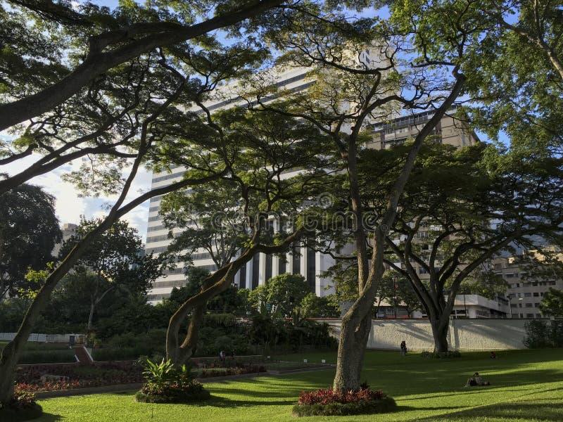 La Estancia del parco pubblico a Caracas, Venezuela immagini stock
