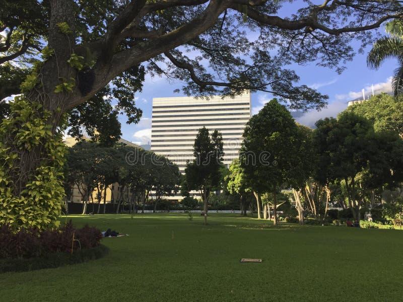 La Estancia del parco pubblico a Caracas, Venezuela fotografie stock libere da diritti
