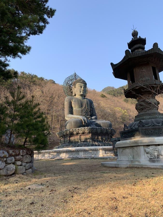 La estatua de Buda es meditada por una montaña en la tierra foto de archivo