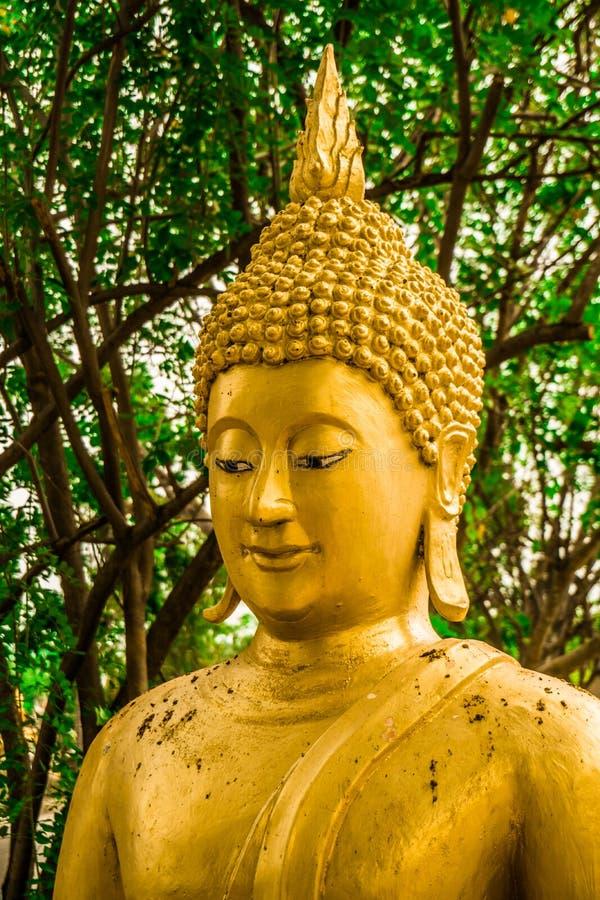 La estatua del ฺBuddha fotografía de archivo libre de regalías
