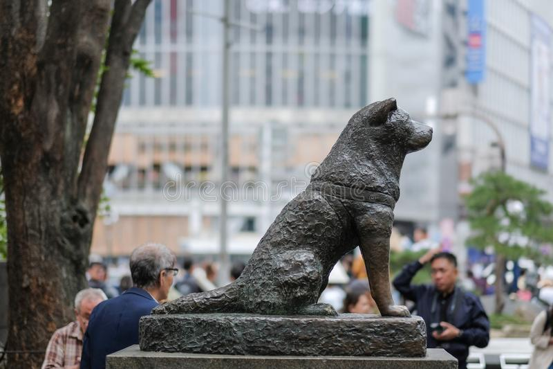 La estatua del perro de Hachiko en la estación de Shibuya en Tokio, Japón foto de archivo libre de regalías