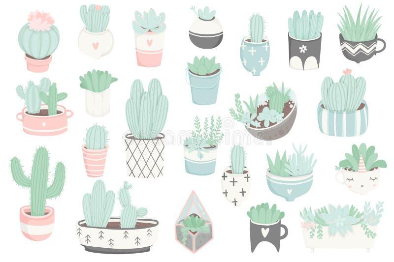 La etiqueta engomada linda del verano fijó con los cactus y los succulents libre illustration
