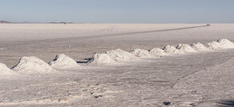 La extracción de sal en Colchani con las pirámides de la sal, alista para la cosecha, en la sal Salar de Uyuni plano de Uyuni, Bo imagen de archivo libre de regalías