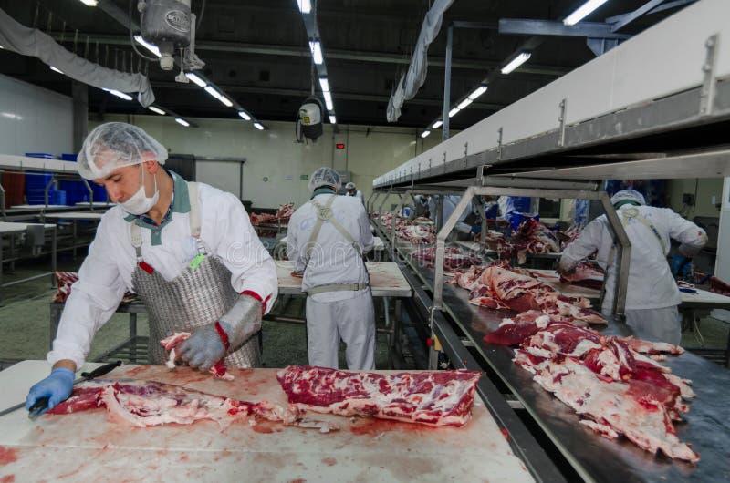 La fábrica para la producción de comida de los ingredientes naturales Carnicero Shop Carne de vaca que mata fotos de archivo libres de regalías