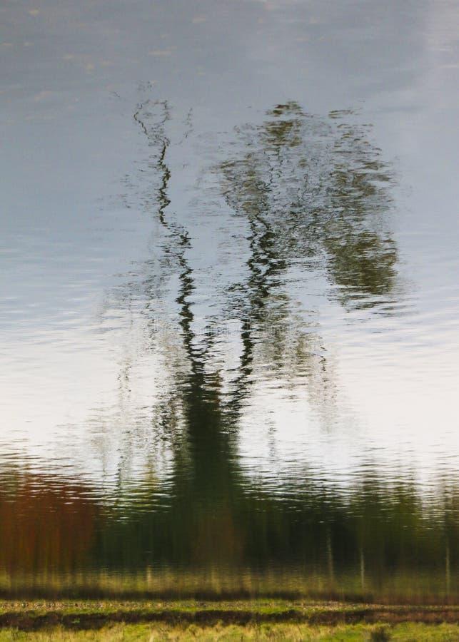 La falta de definición de la naturaleza 3 foto de archivo