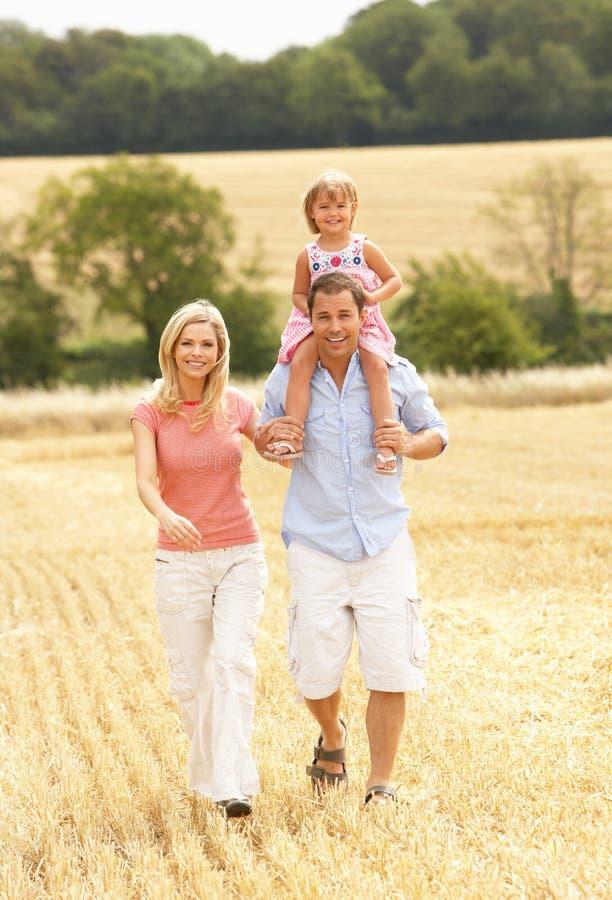 La famiglia che cammina insieme con l'estate ha raccolto la F fotografia stock
